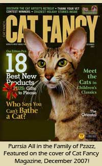 Purrsia Cattery Oriental Short Hair featured on the December 2007 cover of Cat Fancy magazine!